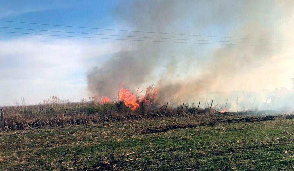 Prevención de incendios en el campo: ¿Qué debemos hacer?