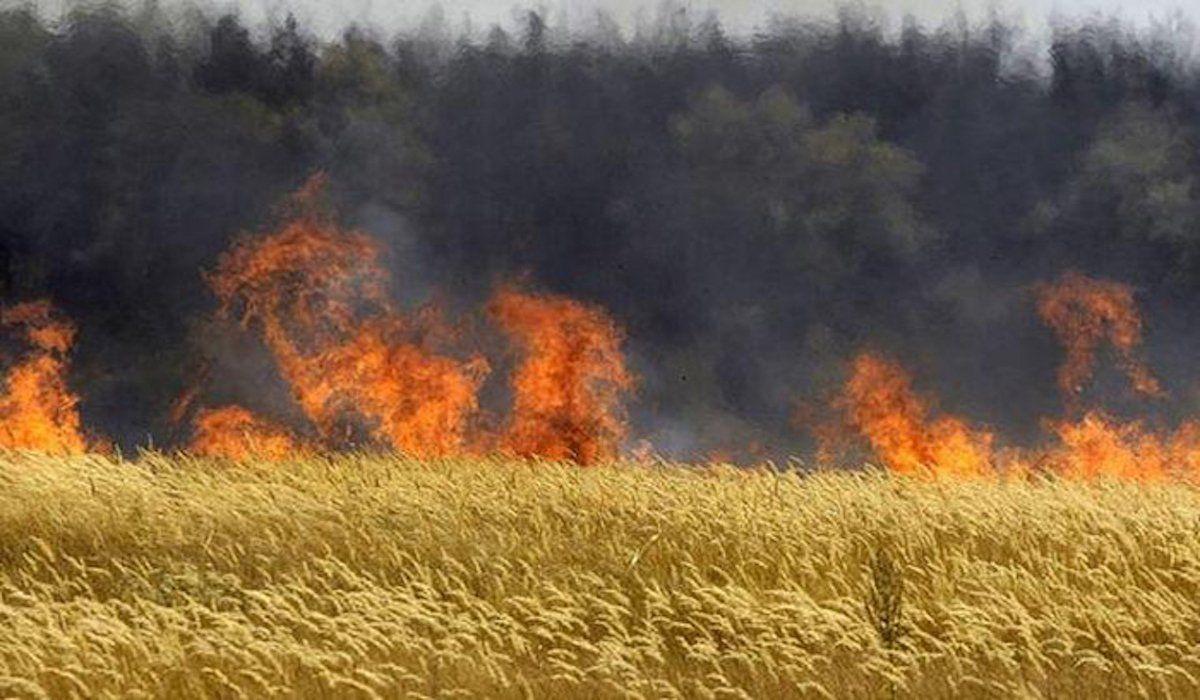 prevención de incendios en el campo